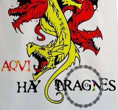 HIC SUNT DRACONES 'Aquí hay Dragones' Photo